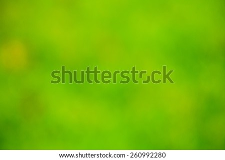 Abstract green nature background - stock photo