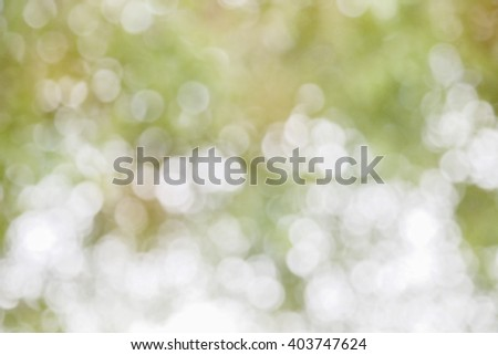 abstract green nature background with blurry bokeh defocused lights. - stock photo
