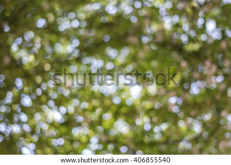abstract green nature background with blurry bokeh defocused lights - stock photo