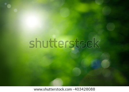Abstract green summer background - stock photo