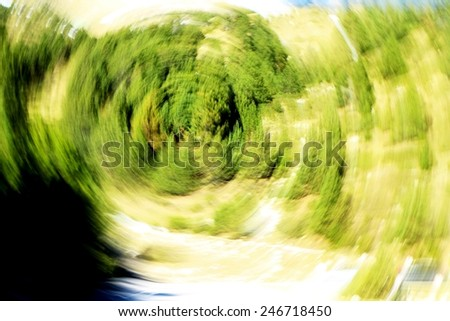 Abstract green trees - stock photo