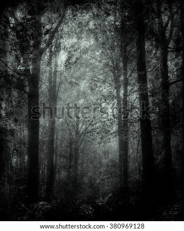 Abstract Grunge Forest Wallpaper