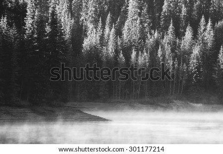 abstract high contrasted morning lake in black and white  - stock photo