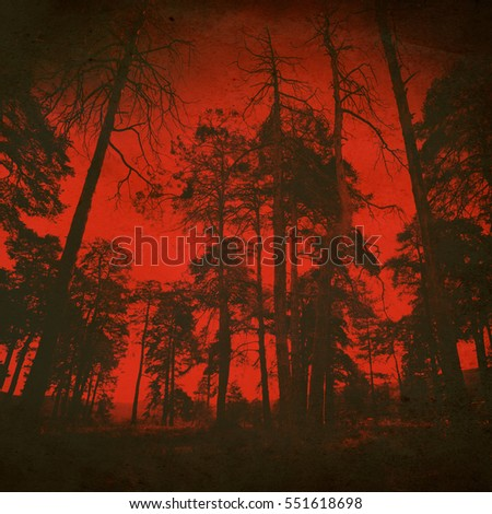 abstract horor red fores art background, vintage textured style, night evil woods