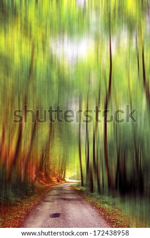Abstract image of trees in an autumn forest. Intentional motion blur - stock photo