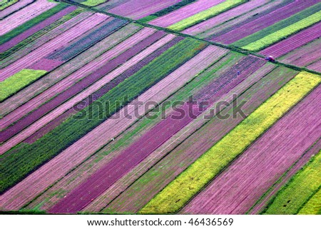 Abstract landscape, Aerial view of colorful fields - stock photo