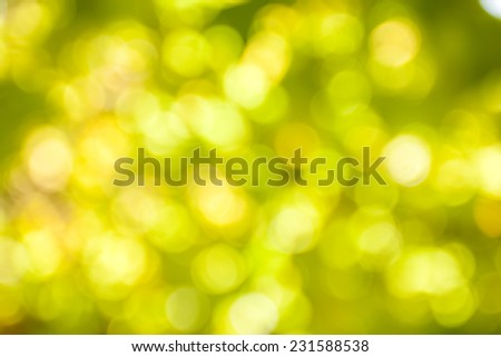 abstract light green blur bokeh background.
