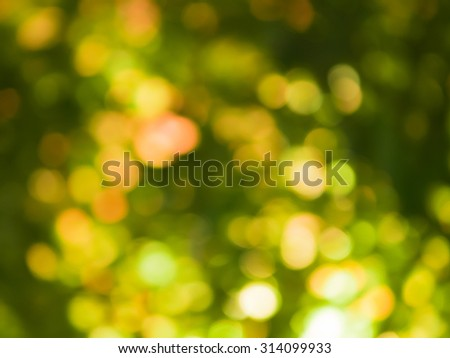 Abstract lights of nature using as background or wallpaper.