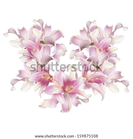 Abstract love Heart of the petals flowers exotic pink lily - stock photo