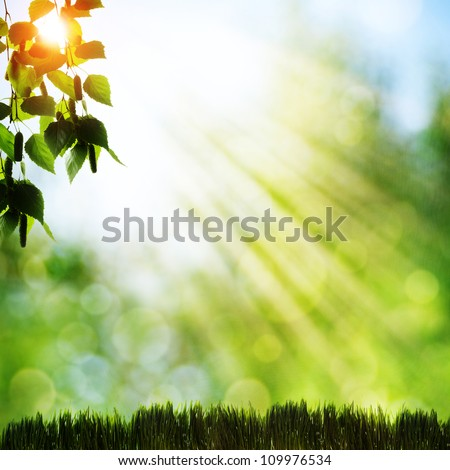 Abstract natural backgrounds with beauty bokeh - stock photo