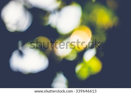 abstract natural blur background, defocused leaves, bokeh, nature background