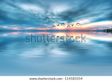 abstract nature - stock photo