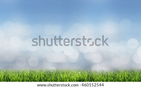 Abstract nature background of green meadow with blurred background and bokeh of light - stock photo