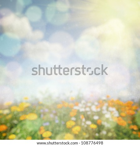 Abstract nature background with flower field - stock photo