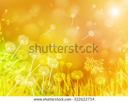 Abstract nature bokeh background. Beautiful Dandelions field with sun light, flowers and grass. Dandelions flying to the sun as the summer is over. Beautiful fall with meadow full of flowers and grass