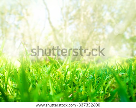 Abstract nature grass field background with bokeh glowing light - stock photo