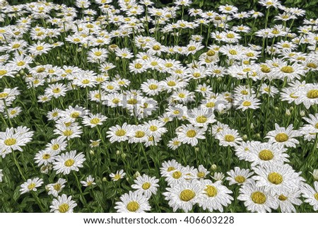 Abstract of many daisies (binomial name: Bellis perennis) in flower garden, with digital oil-painting effect, for decoration and background with themes of summer, repetition, abundance