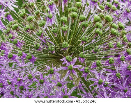 Abstract of ornamental allium flower, with digital oil-painting effect, for decoration or background with themes of nature, gardening, spring