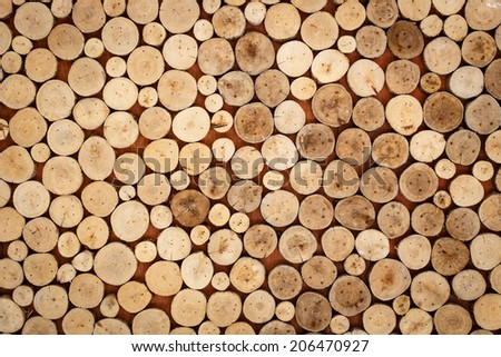 abstract of wood logs texture background
