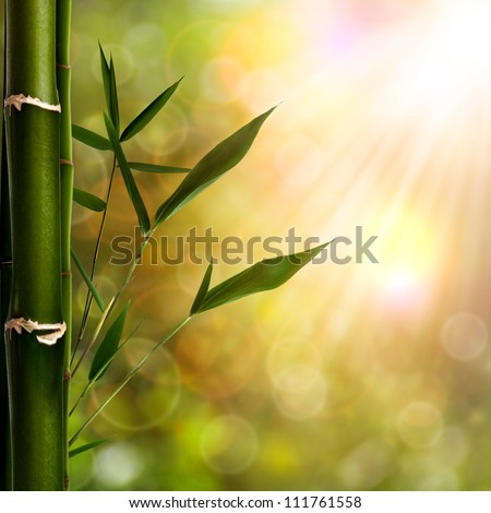 Abstract oriental backgrounds with bamboo foliage - stock photo