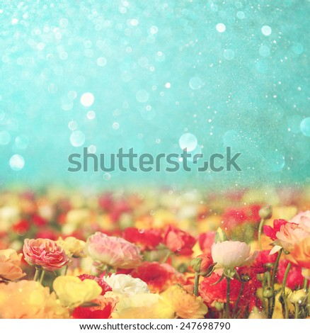 abstract photo of wild flower field and bright bokeh lights.  - stock photo
