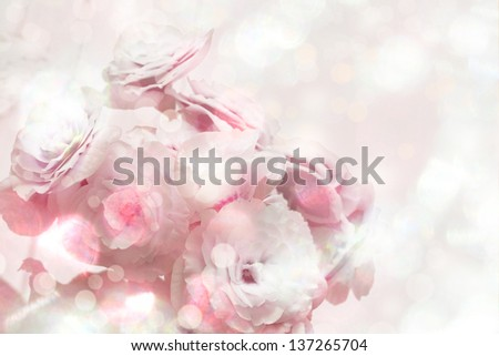 Abstract pink flower background/ beautifull  background with pink flowers - stock photo