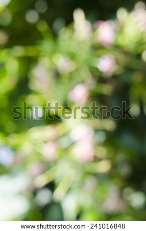 Abstract Pink flowers blur Backgrounds. - stock photo