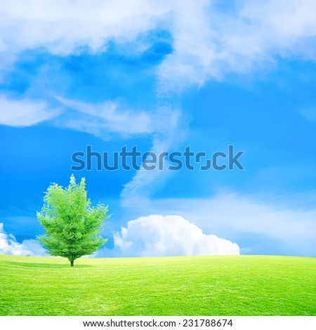 abstract scene glow sky on green landscape