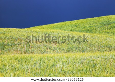 Abstract scenic view of typical Tuscany landscape, Italy - stock photo