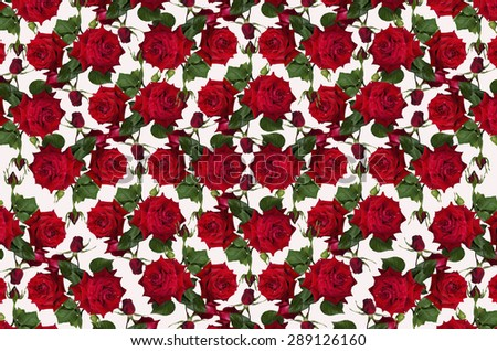 Abstract seamless mottled white background with red roses and buds - stock photo