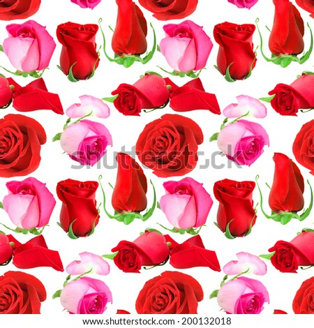 Abstract seamless pattern with pink flowers and buds of roses. Isolated on white background. Close-up. Studio photography. - stock photo