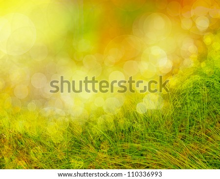 abstract season  background with grass and bokeh