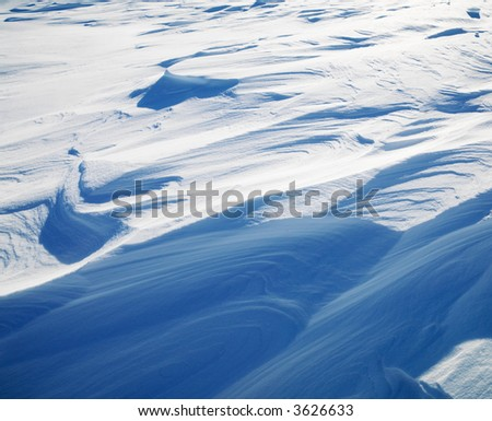 Abstract shot of winter elements in the Midwestern, USA.