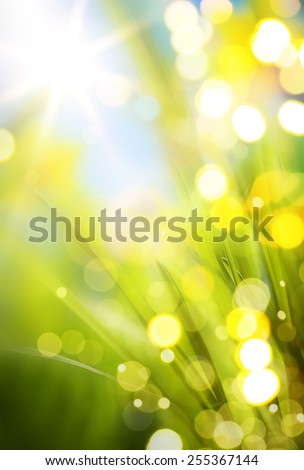 abstract spring background  - stock photo