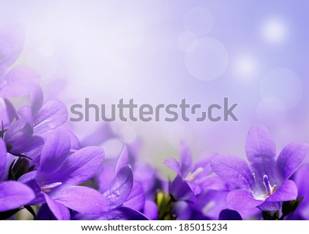 Abstract spring border or background with purple flowers  - stock photo