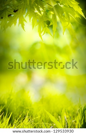 abstract spring green background