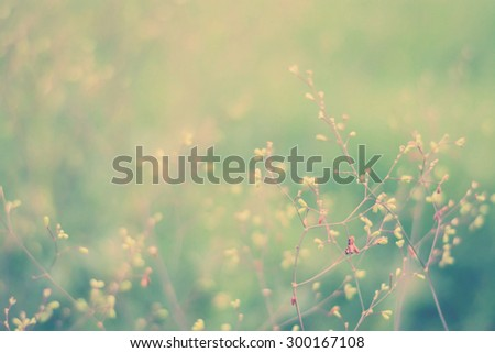 Abstract Spring or summer season abstract beautiful vintage tone nature plant in the wind motion blur background - stock photo