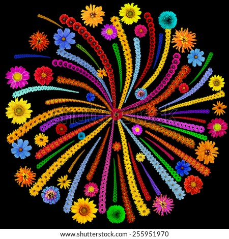 Abstract square  mandala - Fireworks isolated on black - made from vivid  summer flowers. Handmade  naive collage - stock photo