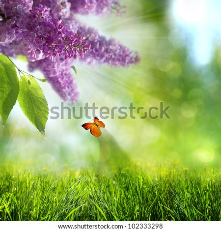 abstract summer backgrounds with lilacs flowers and butterfly - stock photo