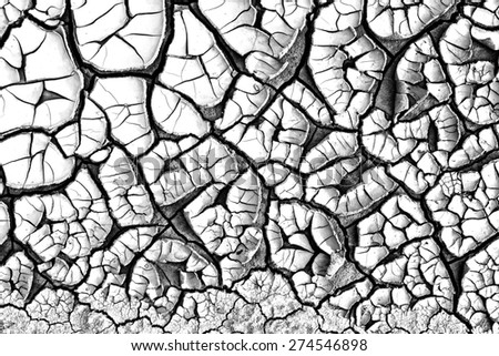 Abstract texture of cracked dirt on white background, black and white image - stock photo
