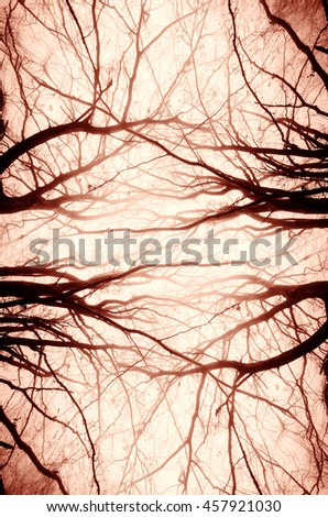 abstract tree branches spooky background - stock photo