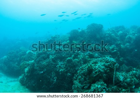 Abstract underwater scene