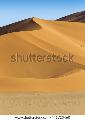 Abstract view of a dune.