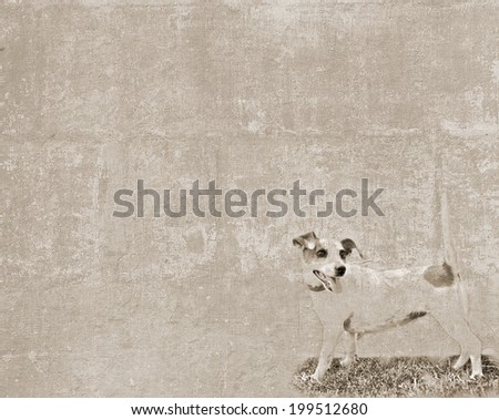 Abstract vintage textured background with a sketch of a small dog  - stock photo