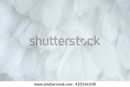 abstract white fabric background , Wedding, Valentine, Engagement, Anniversary theme