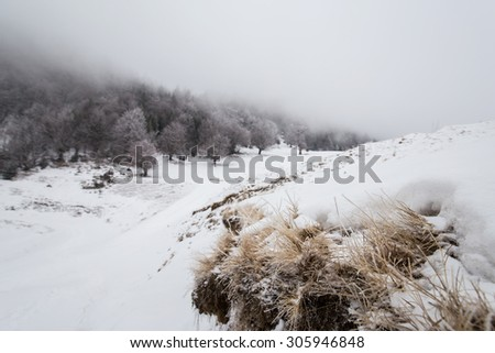 Abstract winter scenery with fog and snow, in the mountains - stock photo