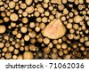 Abstract wood log background - stock photo