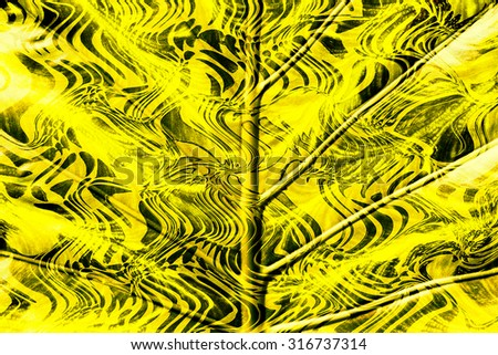 abstract yellow leaf texture for background