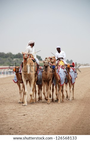 ABU DHABI, UNITED ARAB EMIRATES - APRIL 10: Training of race camels on the Abu Dhabi Camel Race track April 10, 2012 in Abu Dhabi, UAE. The jockeys are robots that are remotely controlled.