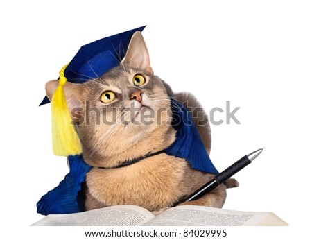 Abyssinian cat in graduation cap and gown with pen and book isolated on white